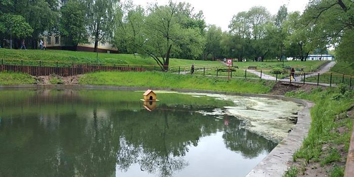 Депутат Мосгордумы сообщила о разрушении береговой линии пруда Генерала Антонова