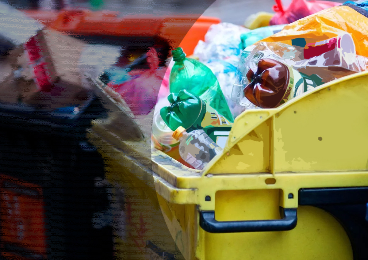 Гендиректор РЭО по цифровизации  анонсировал изменения в системе наблюдения за движением отходов в России