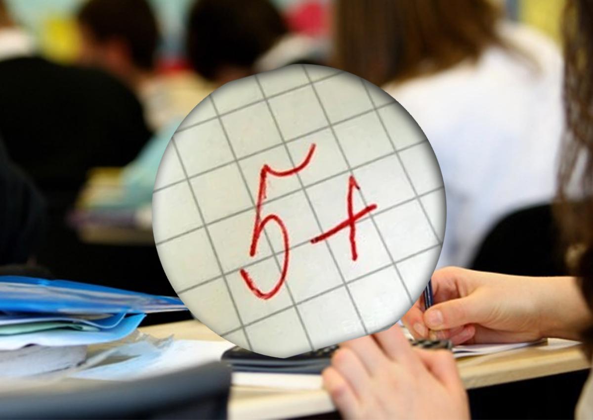 «Всех под одну гребенку нельзя!» Вице-спикер Госдумы призвал пересмотреть критерии оценки школьного преподавания